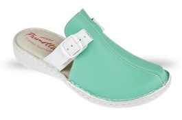 Women's Clogs Piumetta 4458 green